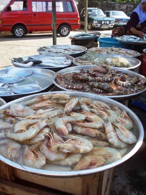 fresh-prawn.jpg