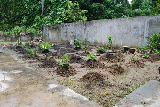 herbs-garden0002house.jpg