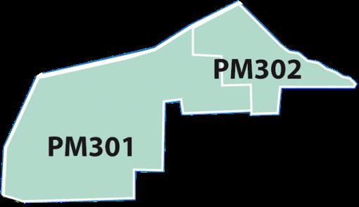 PM301302